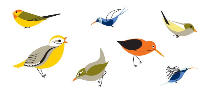 birdsrev